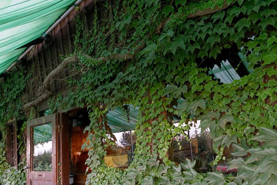 Veigl-Hütte_IMG45094_web