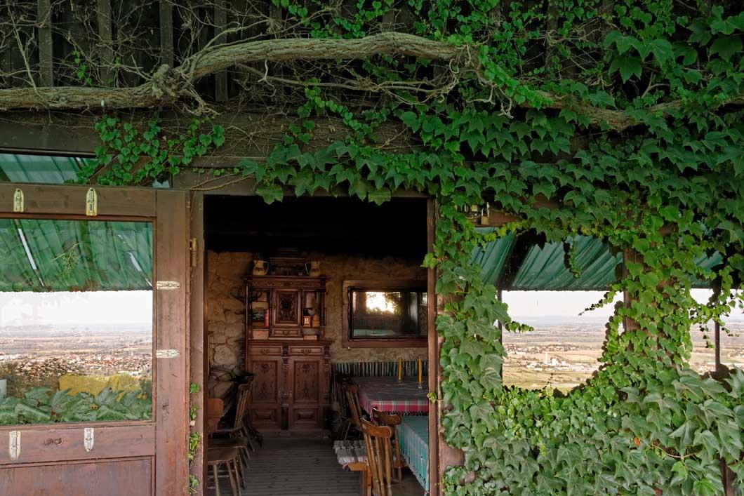 Veigl-Hütte_IMG45096_web