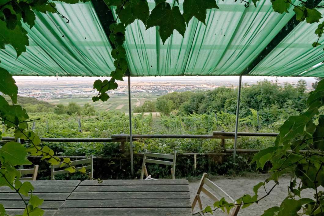 Veigl-Hütte_IMG45129_web